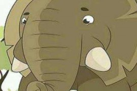 大象喝醉了