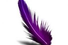 会唱歌的紫色秋千