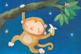 爱炫耀的猴子
