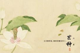 关于芒种的古诗