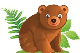 小棕熊找房子