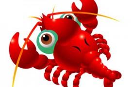 小龙虾的新衣服