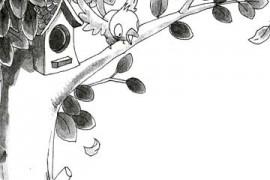 小麻雀的苹果树