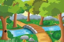 一条温暖的河来过森林