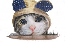 小花猫的帽子