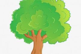 大树帮我来记账