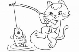 小猫波波钓了条大鱼